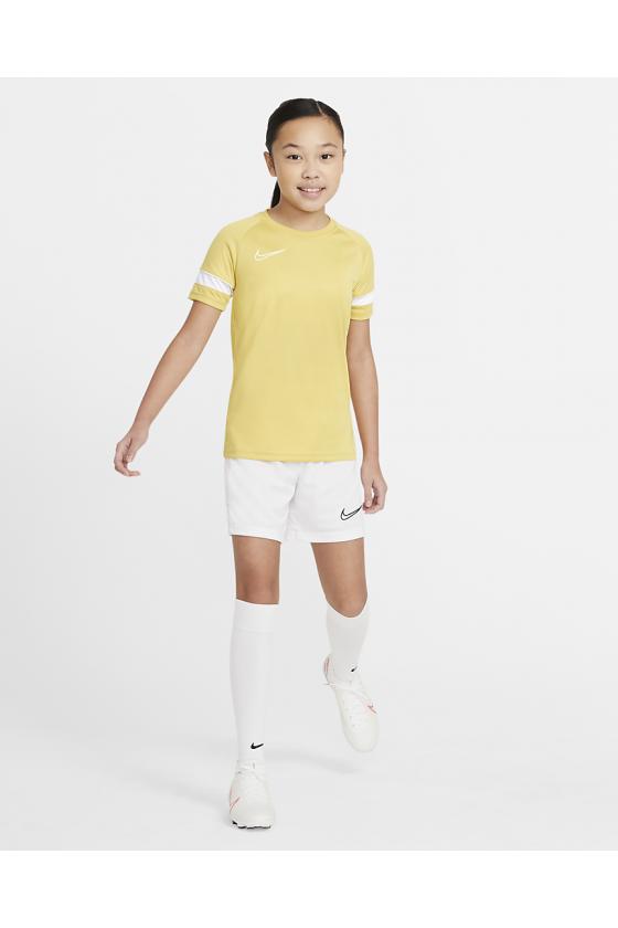 Nike Dri-FIT Academy 700 SP2021