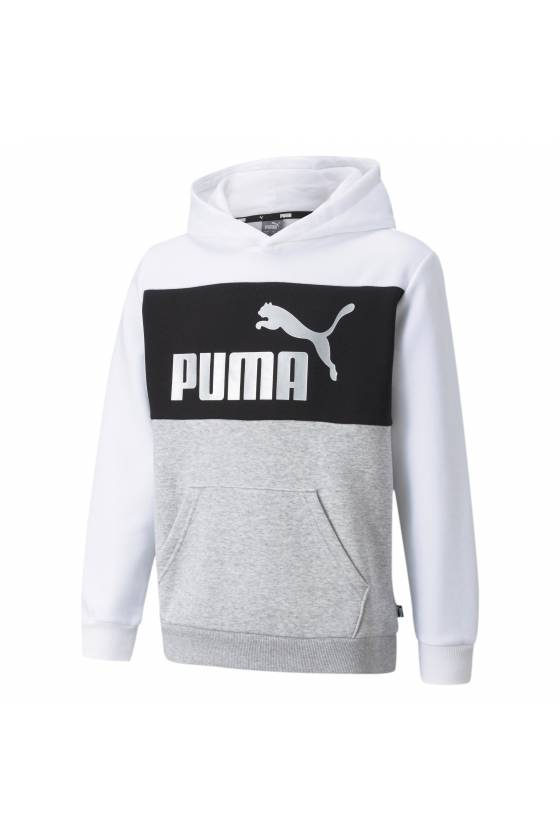 ESS+ Colorblock Hoodie Puma...